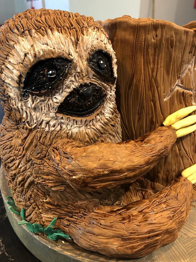 Just Slothing around