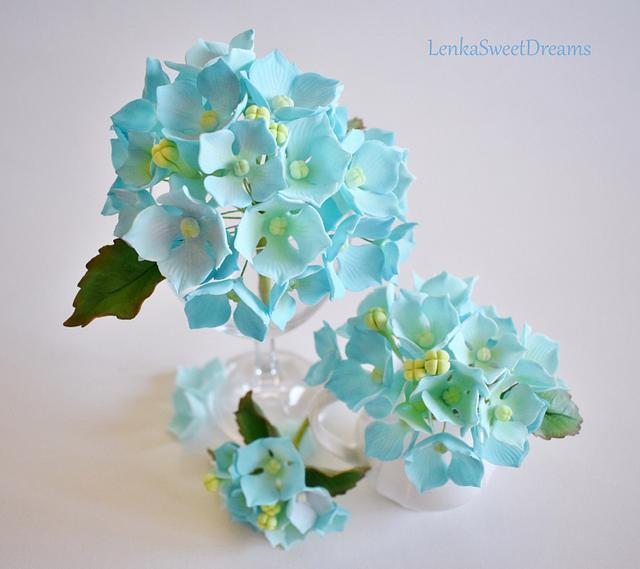 Hydrangea sugar flower.