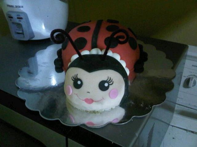 Miss Ladybug!