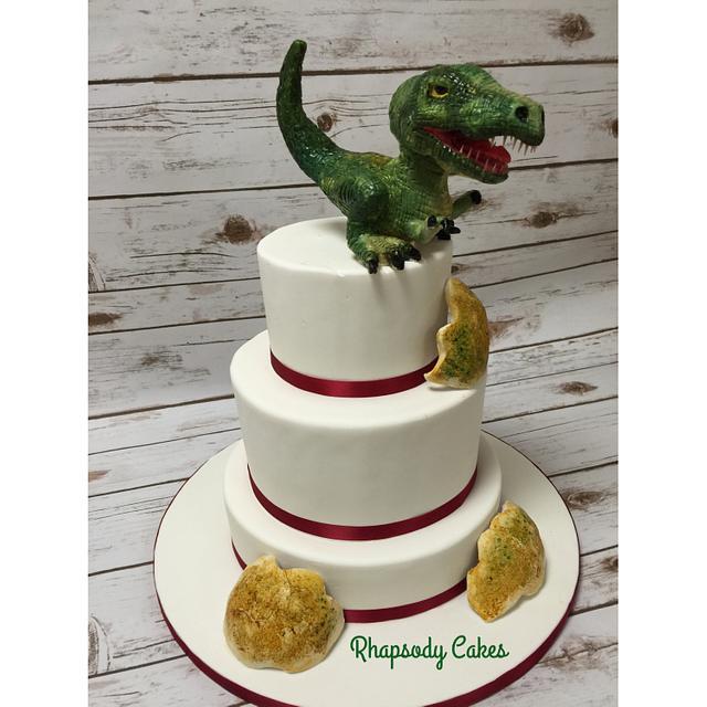 Dinosaur Baby!