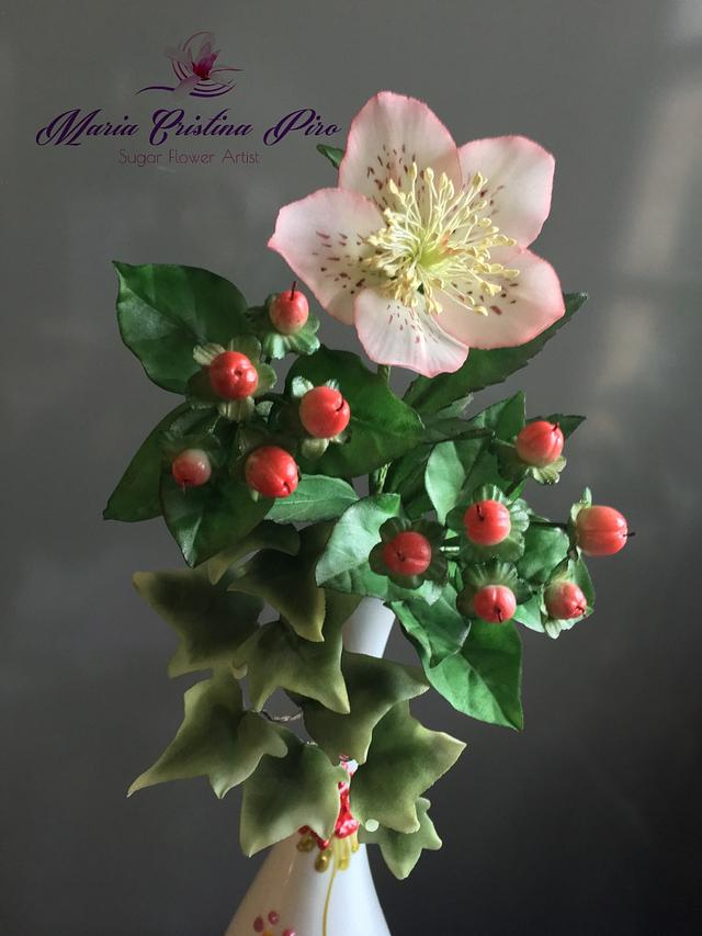Hellebore, hypericum berries, ivy leaves