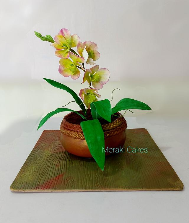 Realistic orchid pot cake
