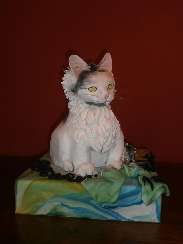 My 101 cat