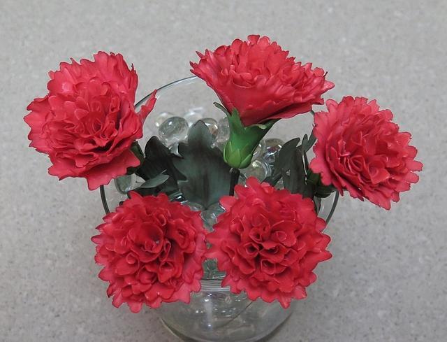 Red Carnations MBalaska 10-4-2016