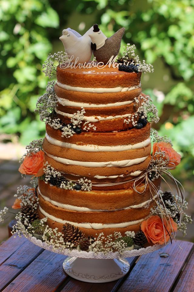 Natural naked cake :