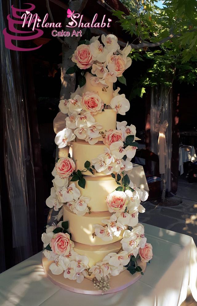 Wedding cake for my daughter