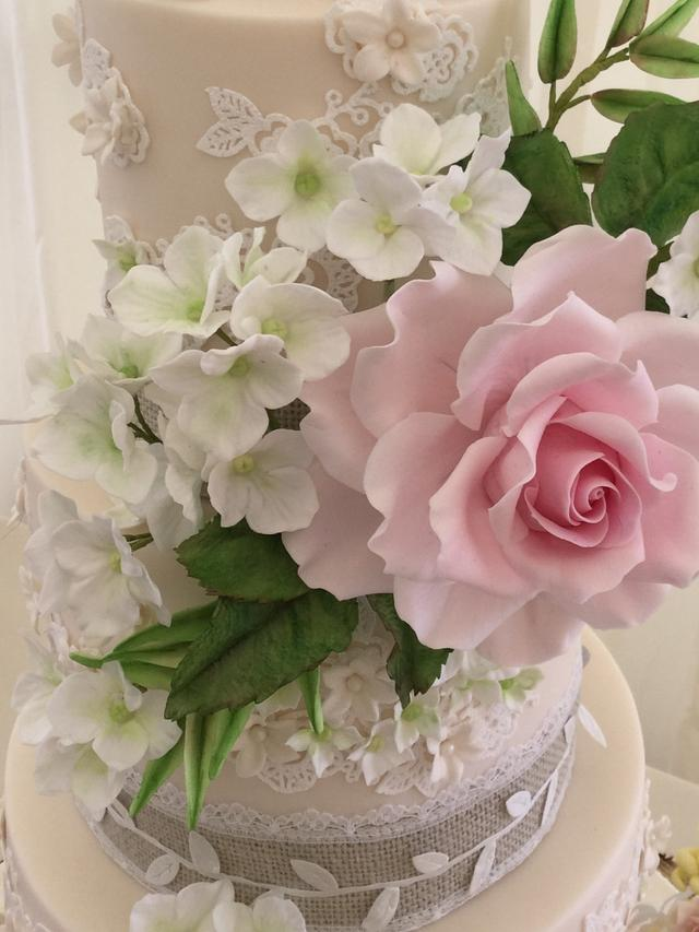 Wedding cake and Ponies