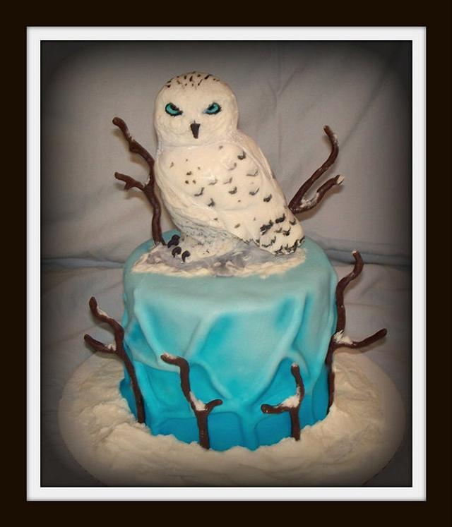 Snowy Owl Cake