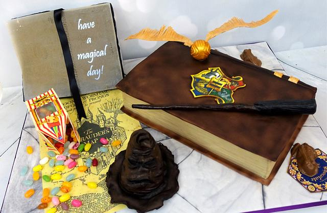 Harry Potter Cake With Light-Up Wand and Edible props
