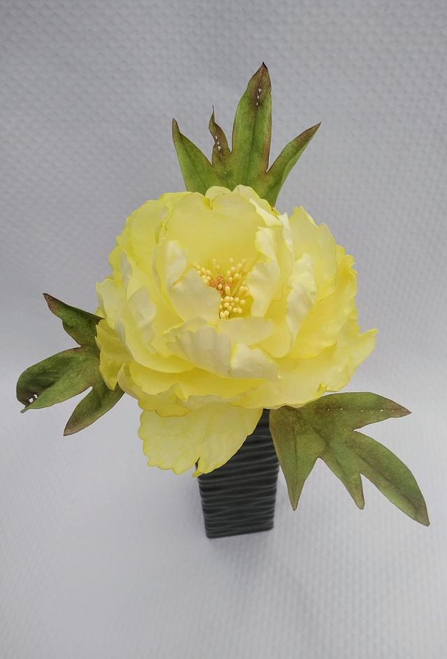First peony made of wafer paper