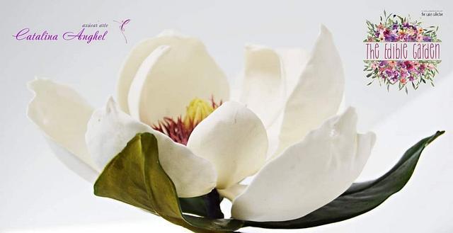 The Edible Garden - Magnolia Grandiflora ❤️