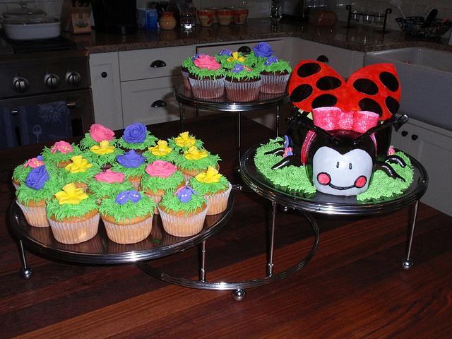 LadyBug and Cupcakes