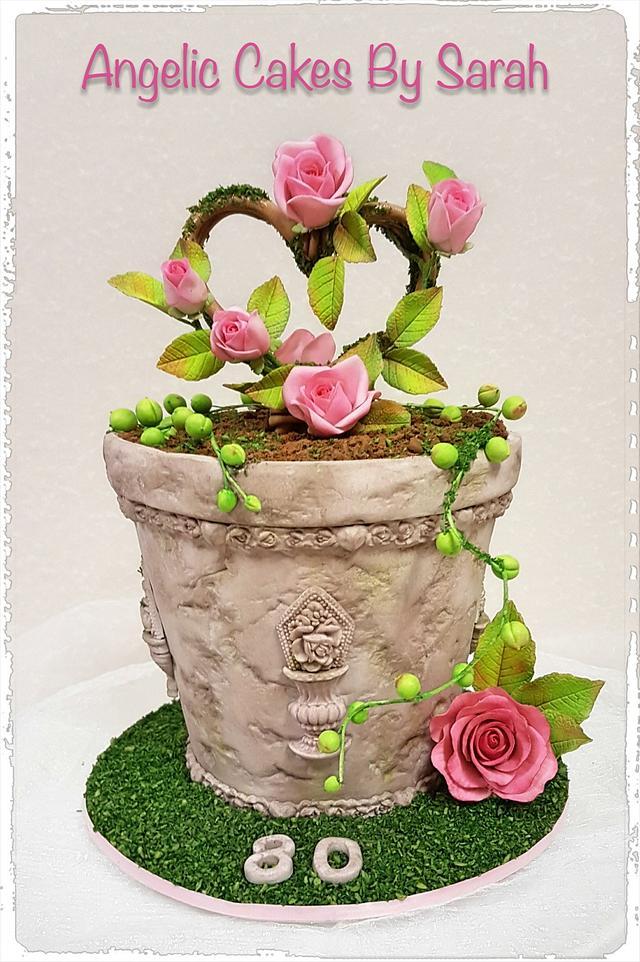 80th Birthday Potplant cake