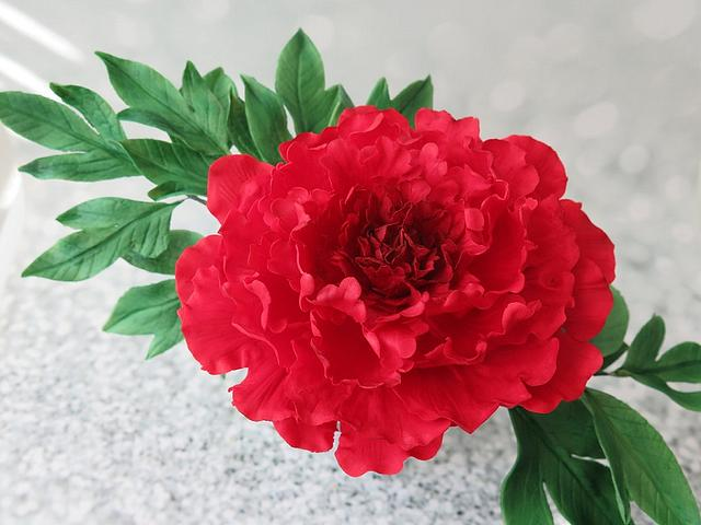 Red ruffled peony