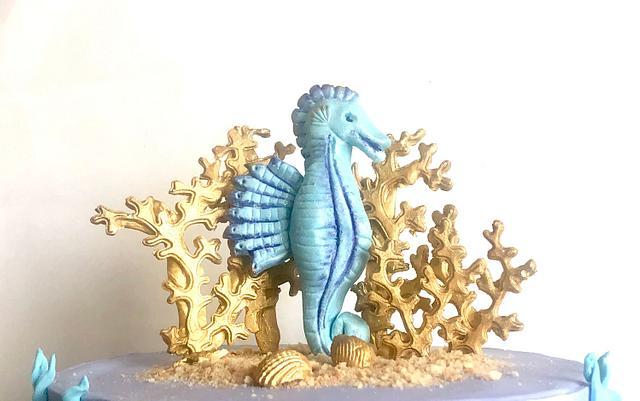 Sea horse and Corals
