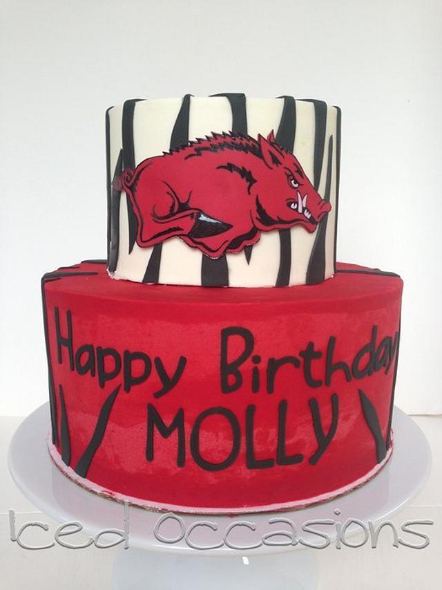 Arkansas Razorbacks Birthday Cake