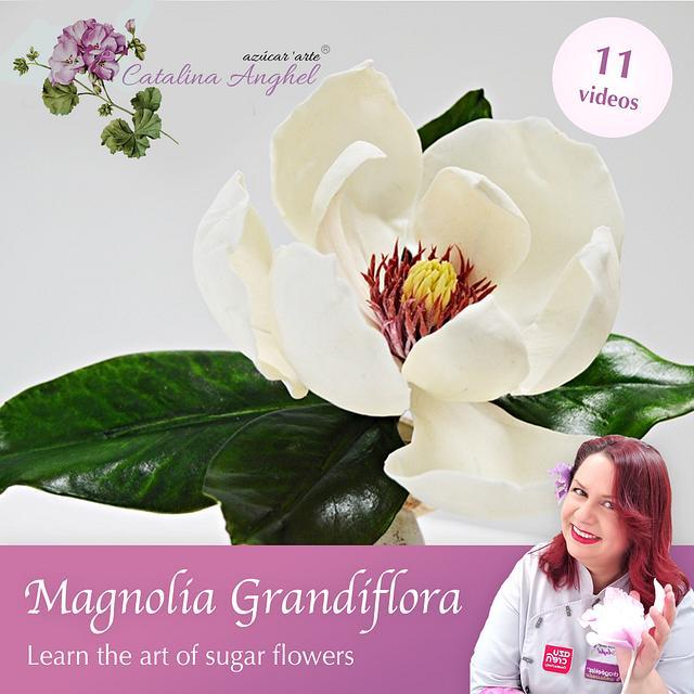Free-Formed Sugar Magnolia Grandiflora - Course by Catalina Anghel azúcar'arte