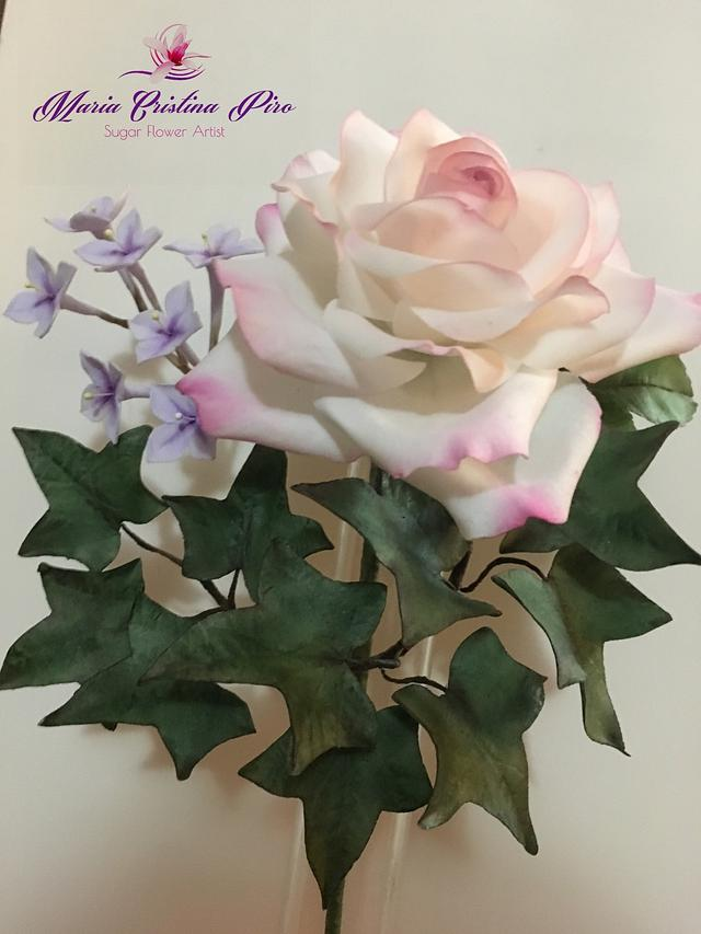 Spring air...The rose