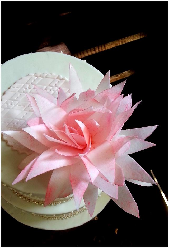 Wafer paper flower again!