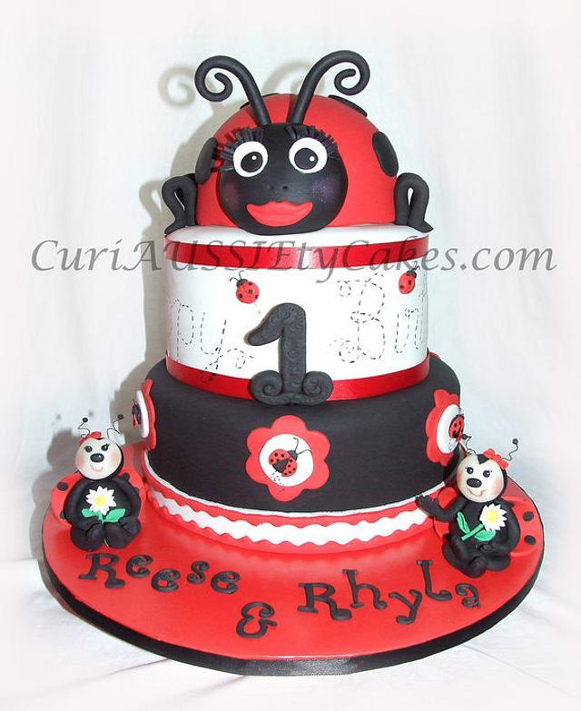 Twins Lady Bug cake