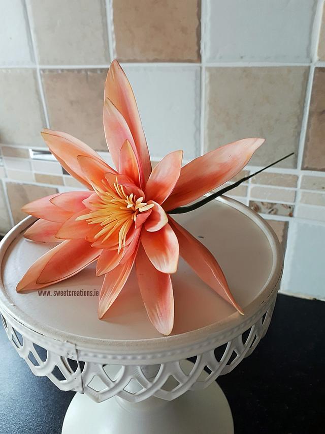 Stylised Lily Cake