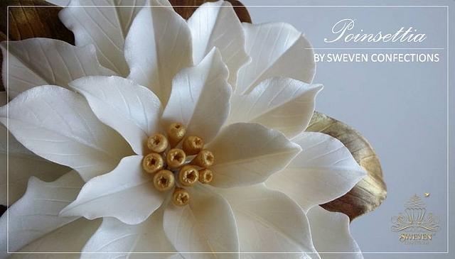 Sugar Poinsettia