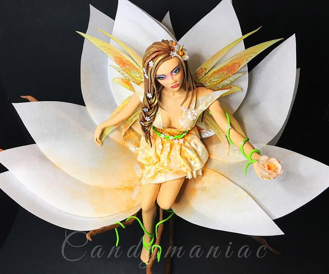 Spring fairy Collaboration