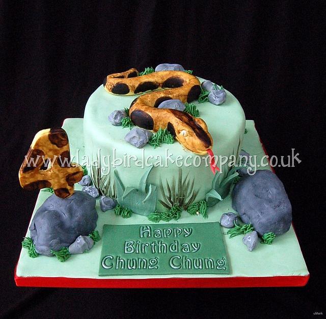 Brilliant Snake Cake Cake By Liz Ladybird Cake Company Cakesdecor Funny Birthday Cards Online Amentibdeldamsfinfo