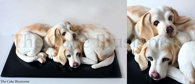 Two lemon beagles - Cake