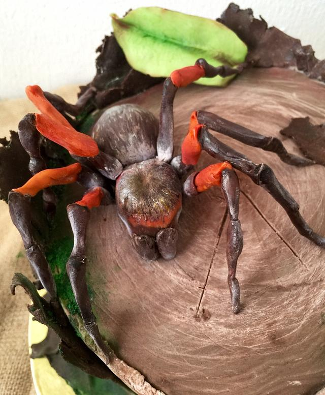 Incredible Birthday Cake With A Spider Cake By Dinadiana Cakesdecor Funny Birthday Cards Online Barepcheapnameinfo