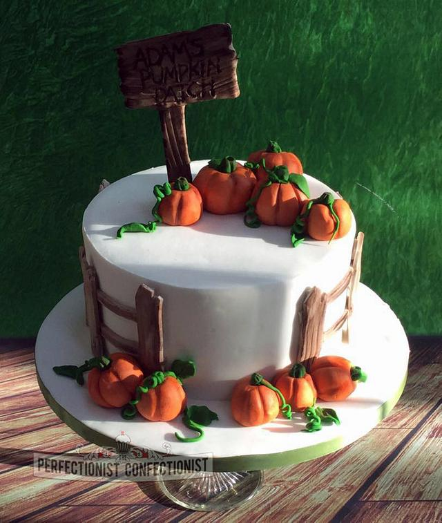 Adam - Pumpkin Patch Birthday Cake