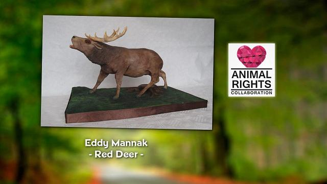 Red Deer for Animal Rights Collaboration