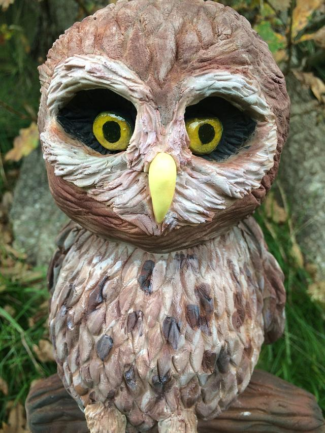 Fairytale Forest - Mooneye the Owl
