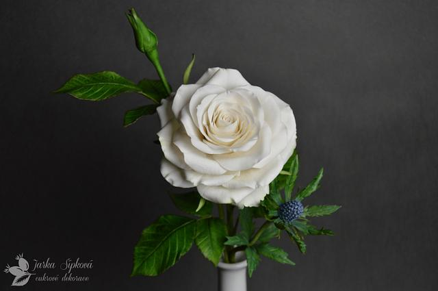 Rose, Thistle