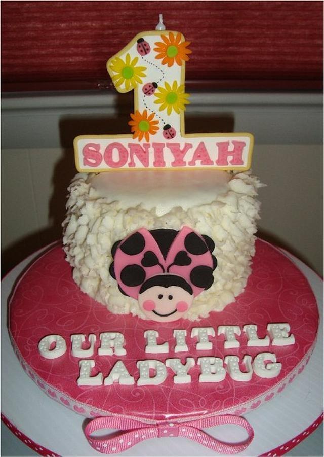 Wondrous Pink Ladybug 1St Birthday Cake By Toni White Crafty Cakesdecor Birthday Cards Printable Giouspongecafe Filternl