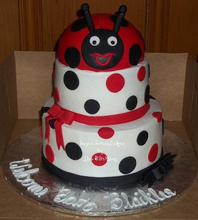 Black, White, & Red Lady Bug