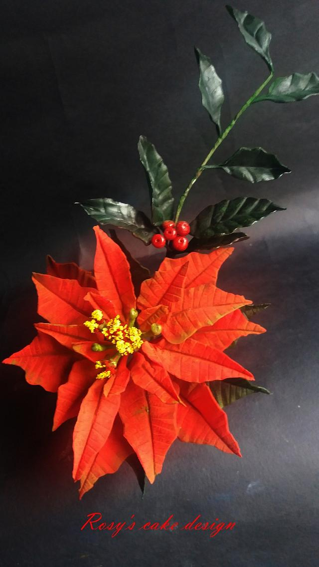 Red Poinsettia and Holly green