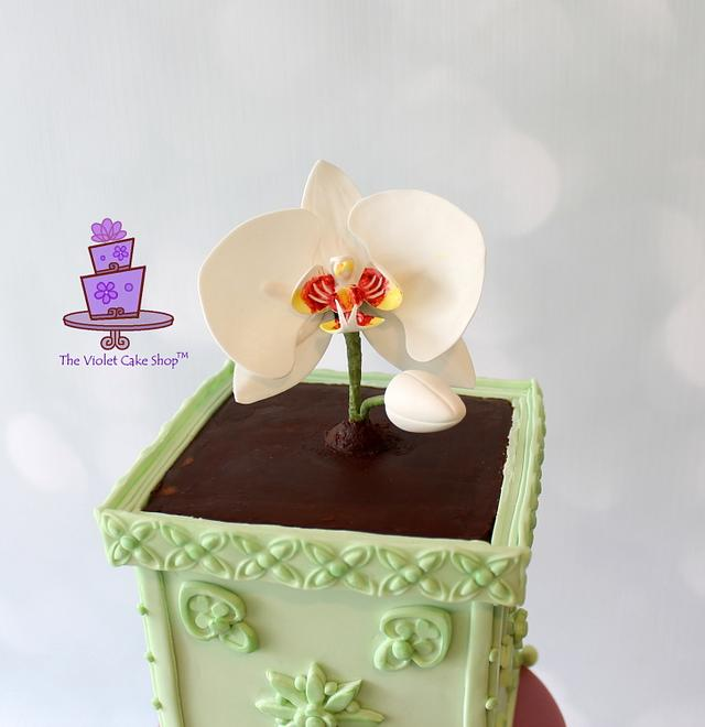 Life & Hope - ORCHID in a Planter Birthday Cake