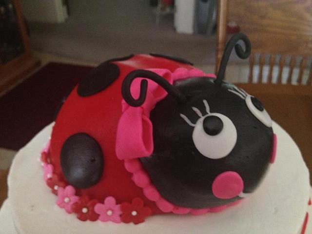 Aubree's ladybug cake