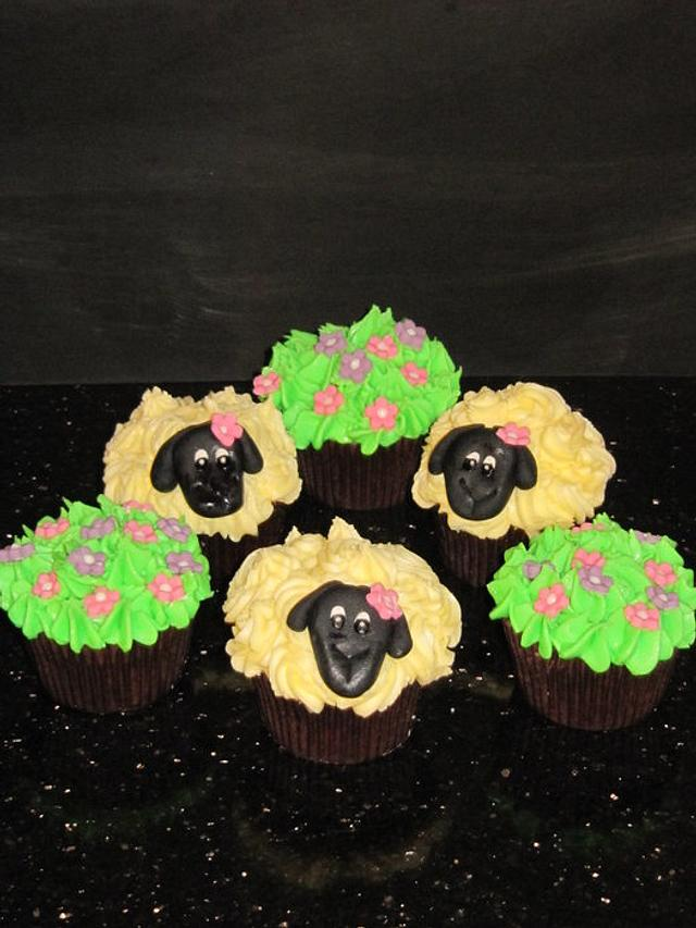 sheep cupcakes