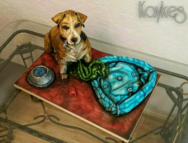 Spike the jack russell cross with his bed an bowl from cake too xxx