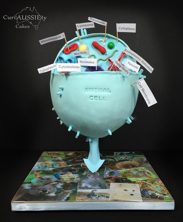"""gravity defying"" Animal cell cake"