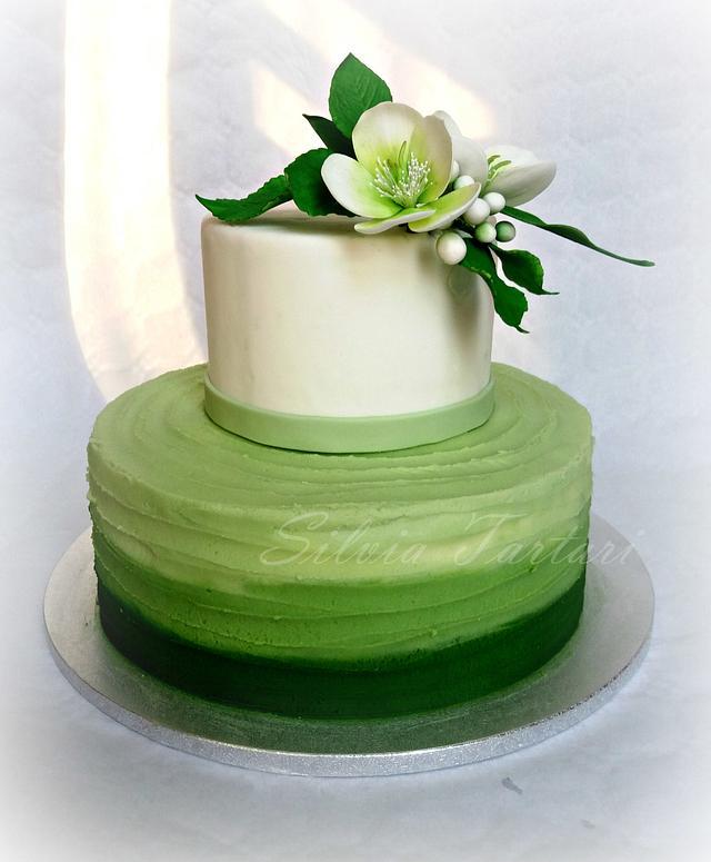 Hellebore ombre cake