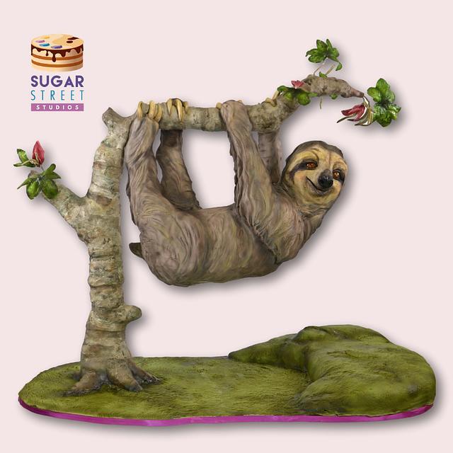 Hanging Sloth Cake!
