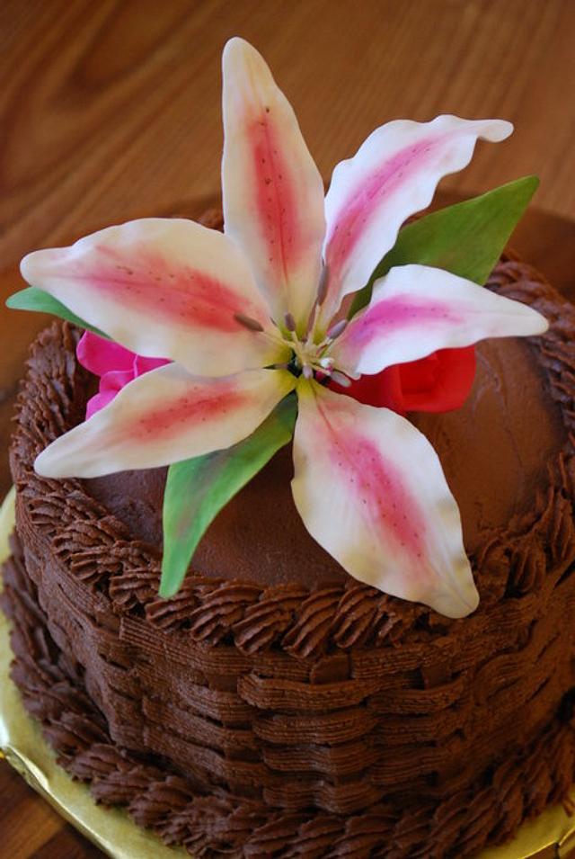 Stargazer cake