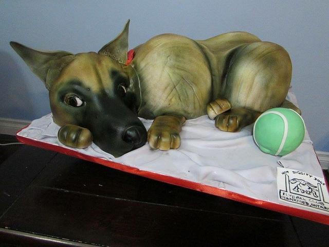 3D German Shepherd dog cake