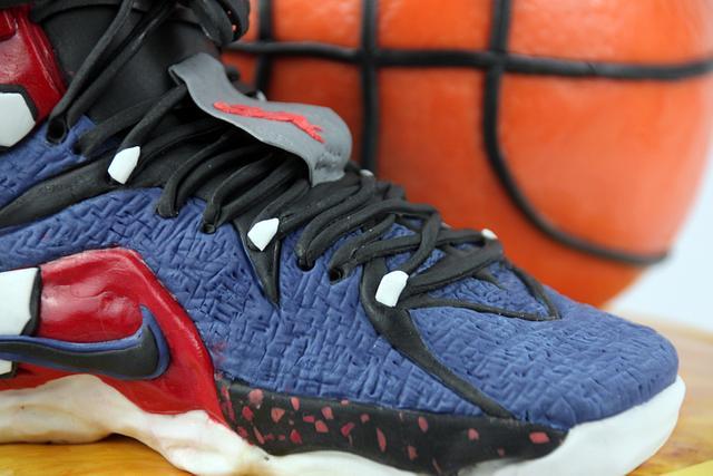 Nike Lebron Trainers