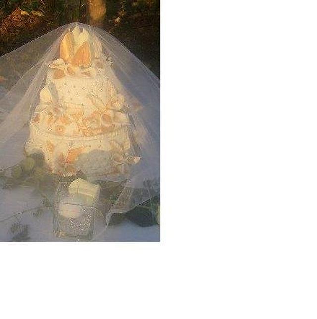 my very first wedding cake