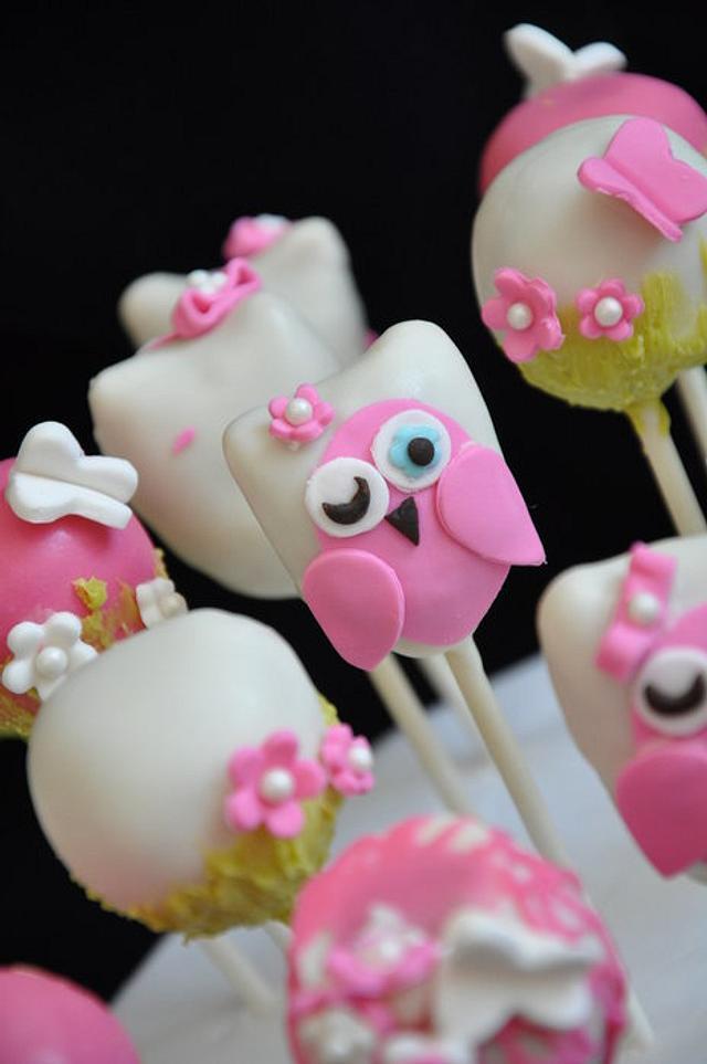 Owl theme cakepops .