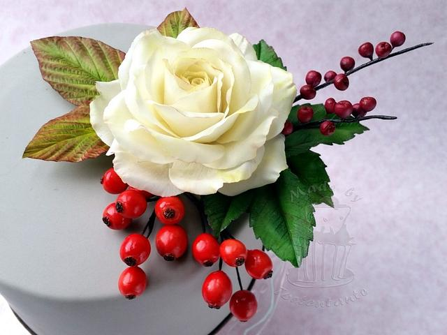 White rose with berries